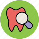 checkup, checkups, dental, dental checkup, dentistry, magnifier, magnifying, tooth icon