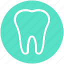 1, dental, dentist, stomatology, teeth, tooth icon