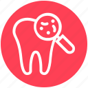 .svg, checkup, dental, dentist, dirt, magnifier, microbe