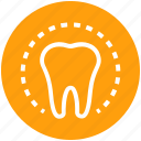 .svg, circle, dental, dentist, health, molar, tooth icon