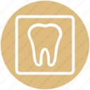 .svg, dental, dentist, stomatology, teeth, tooth icon