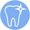 .svg, care, dental, dentist, shine, stomatology, tooth