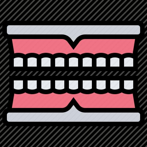 dental, denture, healthcare, medical, teeth icon