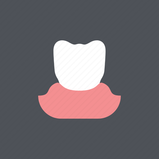 dental, dentist, gum, healthy, medical, tooth, white icon