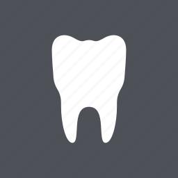 dental, dentist, health, medical, molar, tooth, white icon