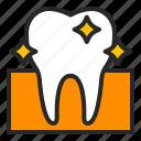 clean, dentistry, fresh, healthcare, orthodontics, teeth, tooth icon