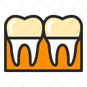cap, crown, dentistry, orthodontics, stoatology, teeth, tooth icon