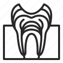 cavity, decay, dentistry, oral, teeth, tooth icon