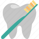 care, cleaning, dental, dentistry, hygiene, tooth, toothbrush icon
