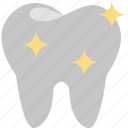 dentist, dentistry, healthcare, healthy, services, tooth icon