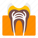 cavity, decay, dentistry, orthodontics, teeth, tooth icon