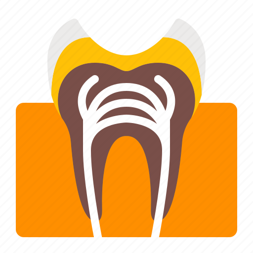 Cavity, decay, dentistry, orthodontics, teeth, tooth icon - Download on Iconfinder