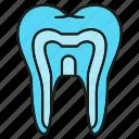 care, dental, gum, stomatology, tooth