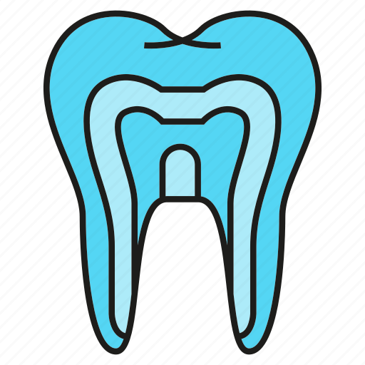 care, dental, gum, stomatology, tooth icon