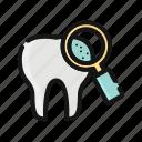 dental, dentist, dentistry, mouth, stomatology, teeth, toothbrush