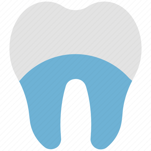 clean teeth, dental, healthy tooth, hygienic, molar, tooth shine icon