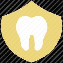 body part, dental, human, human tooth, molar, stomatology, tooth icon