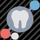 check, dental, dentist, molar, mouth, tooth