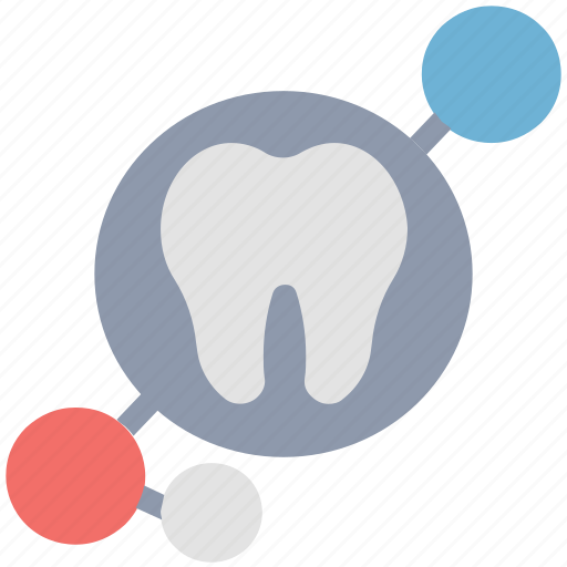 check, dental, dentist, molar, mouth, tooth icon