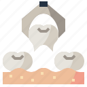 dental, dentist, extraction, healthcare, medical, molar, tooth
