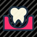 care, dental, health, medical, medicine, teeth, tooth