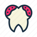 care, dental, germ, oral, stomatology, teeth, tooth icon