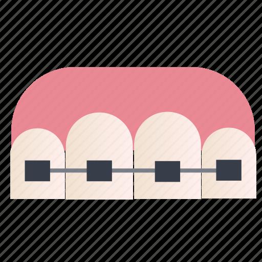Dental, care, dentist, health, medical, teeth icon - Download on Iconfinder