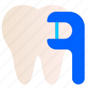 dental, care, dentist, health, medical, teeth