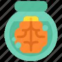 biology, brain, design, designthinking, experement, think, thinking icon