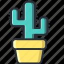 cactus, desert, green, nature, plant