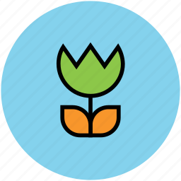 flower, flower with leaves, nature, plant, tulip icon