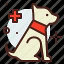 dog, funding, handicap, injured, service icon