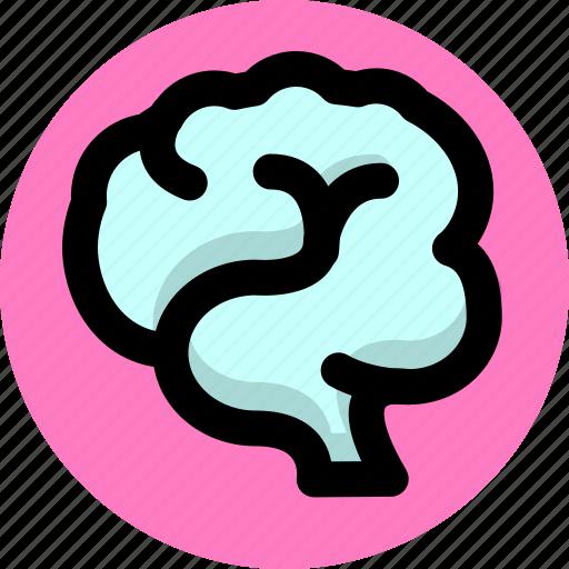 brain, health, nerve icon