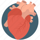 disease, heart, heart disease, heart problem, heart veins icon