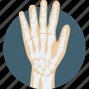 disease, hand, hand bones, medical, x-ray icon