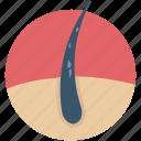 dandruff, disease, hair disease, hair infection, hair problem icon