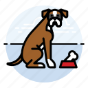 pet, boxer, dogs, puppy, dog icon