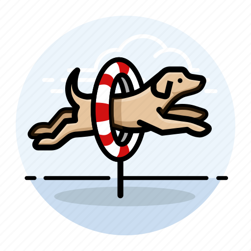 dog, dog agility, dog show, dogs, labrador retriever, pet, yellow lab icon