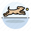 dog fetching, dogs, labrador retriever, pet icon