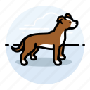 boxer, dogs, pets icon