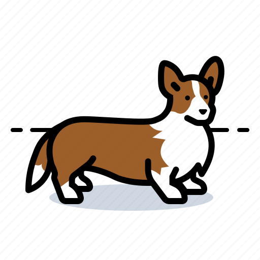 corgi, dogs, pet icon