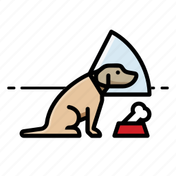 dogs, labrador retriever, pets icon