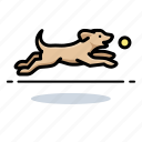 dogs, fetch, labrador retriever, pet icon