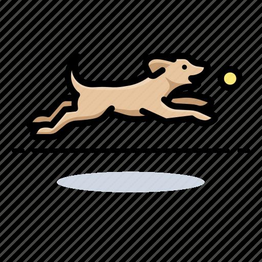 dogs, fetch, labrador retriever, pet icon