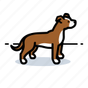 dogs, pet, pitt bull icon
