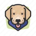 avatars, dog, labrador, retriever
