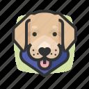 avatars, dog, labrador, retriever icon