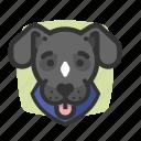 avatars, dogs, gray, puppy icon