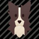 border collie, breed, collie, dog, pedigree, pet, purebred icon