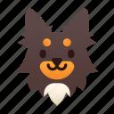 breed, chihuahua, dog, long hair, pedigree, pet, purebred icon